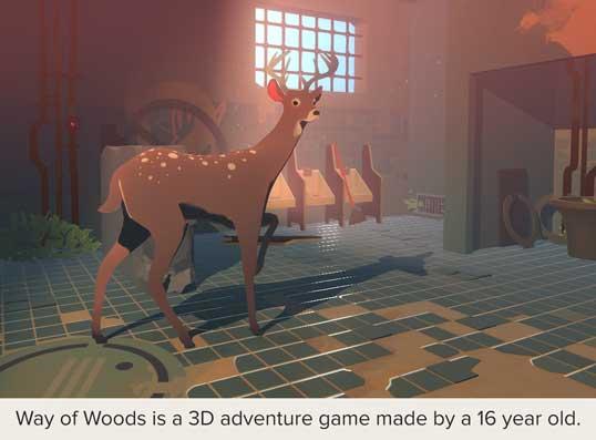 Way of Woods